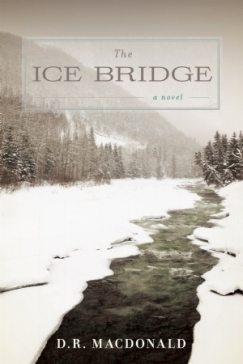 The Ice Bridge by D.R. MacDonald